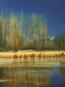 Padule - 2012   olio su tela 30 x 40
